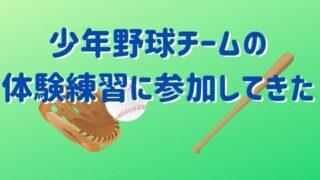 少年野球チームの体験練習に参加